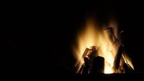 Burning campfire close up Royalty Free Stock Photography