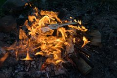 Burning campfire. Close up of burning campfire in summer evening, burning logs in fire royalty free stock photo