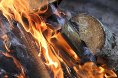 Burning campfire. Flames and logs in a burning campfire Royalty Free Stock Image