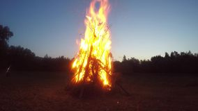 Burning campfire stock video footage