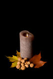 Burning candle, autumn style Royalty Free Stock Image