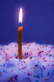 Burning candle and cake Royalty Free Stock Images