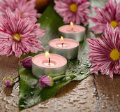 Burning candle and flowers Stock Photo
