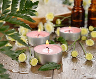 Burning candle and flowers Royalty Free Stock Image