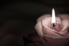 Burning candle in the form of roses. Royalty Free Stock Photography