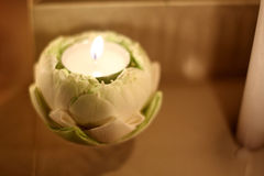 Burning Candle in lotus. Stock Photography