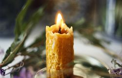 Burning candle made of natural wax burns standing among plants stock images