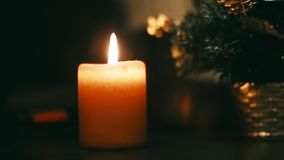 Burning candle new christmas tree stock footage