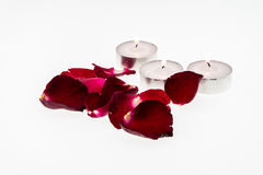 Burning candle and red rose Stock Image