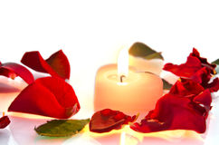 Burning candle in rose petals Stock Photos
