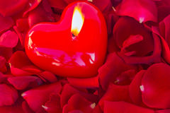 Burning candle with rose petals. Burning heart candle with red  rose petals Stock Image