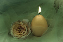 Burning candle and rose Royalty Free Stock Photos