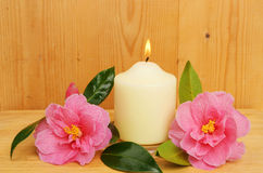 Burning candle and two camellia flowers Stock Image
