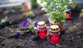 Burning candles , flowers on the cemetery on All Saint s day royalty free stock photo