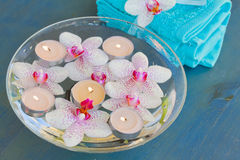 Burning  candles and  orchid flowers in water Stock Image