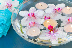 Burning  candles and pink  orchid flowers close up Royalty Free Stock Images