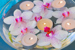 Burning  candles and pink  orchid flowers Stock Photo