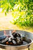 Burning Charcoal Stock Photos