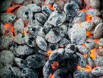 Burning charcoal Stock Images