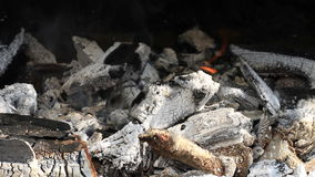 Burning charcoal ready for barbeque stock video footage