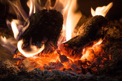 Burning charcoals Stock Images