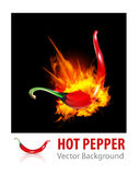 Burning Chili Pepper Stock Images