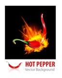 Burning Chilipeppar vektor illustrationer
