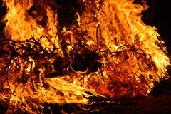 Burning Christmas Tree Royalty Free Stock Photo