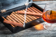 Burning cigar on humidor and cognac Royalty Free Stock Photography