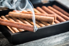 Burning cigar on wooden humidor Stock Photo