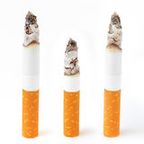 Burning cigarets. Three decaying cigarets on a white background Stock Photos