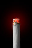 Burning cigarette Royalty Free Stock Photography