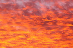 Mammatus clouds by orange sunset Royalty Free Stock Images