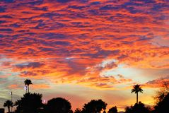 The burning clouds of an Arizona sunset. Royalty Free Stock Photography