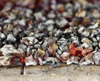 Burning coal Royalty Free Stock Images