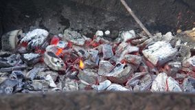 Burning coal in the grill. Fire stock video footage