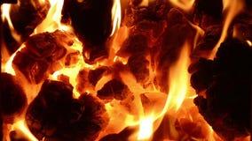 Burning coal in the stove. Full HD, 1080p. stock video