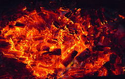 Burning Coals Stock Photography