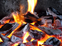 Burning coals. Birch coals burn with a bright flame Royalty Free Stock Image
