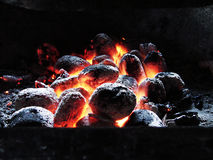 Burning coals. Birch coals burn with a bright flame royalty free stock images