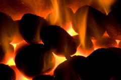 Burning coals Stock Images