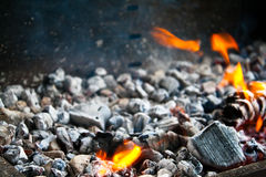 Burning coals in the ash Stock Photography