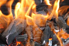 Burning coals. In a fire Royalty Free Stock Photos