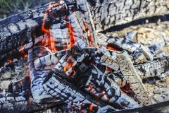 Burning coals. In a fire close up Royalty Free Stock Image