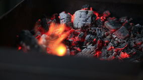 Burning coals, Glowing Charcoal Background stock video footage