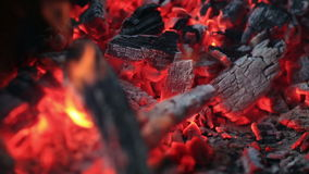 Burning coals, Glowing Charcoal Background stock video