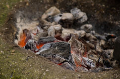 Burning coals. Hot coal. Fire. Stock Photo