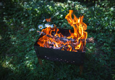 Burning coals in the mangal Stock Images