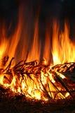 Burning Coconut Leaf Stock Image