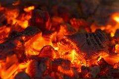 Burning crimson campfire Royalty Free Stock Images
